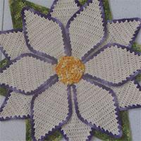 tapete-flor-estrela-mini