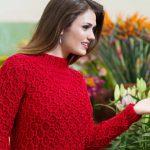 Receita Blusa Vermelha Casa de Abelha com Lã Todo Dia Vitória Quintal